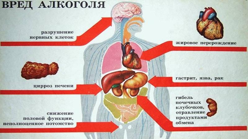 последствия алкоголизма. msk.netslezam.ru